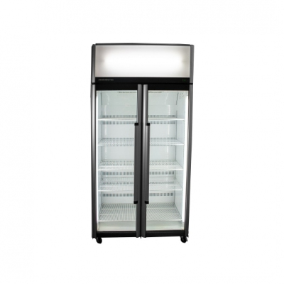 Double Glass Door Fridge